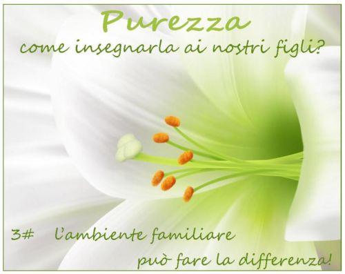 purezza3